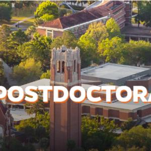 UF Office of PostDoctoral Affairs Announces Career Coaching Program
